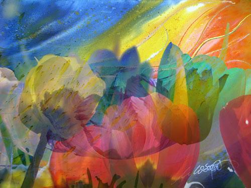 Blume-V07web