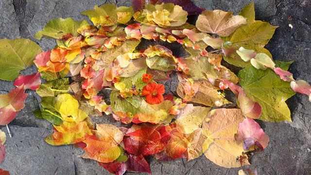 Herbstmixx2web