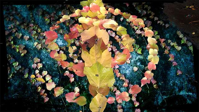 Herbstmixx3web