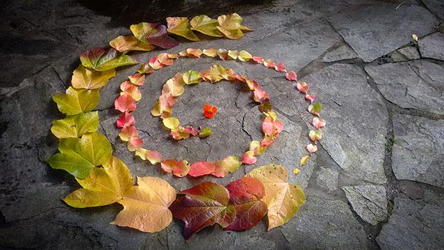Herbstspirale1-web