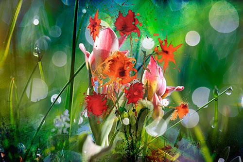 Tulpen-Wiese-Tropfen-Farben-satt-web