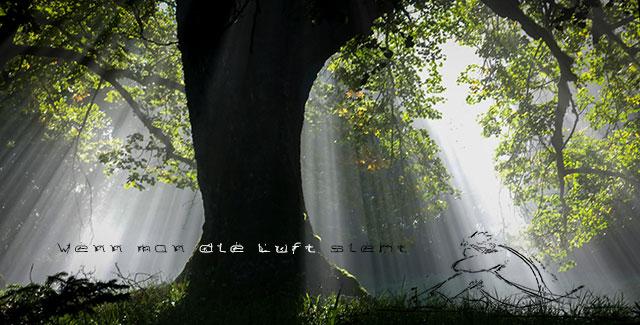 WennmanLuft-sieh-webt